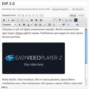 Embedded EVP video inside WordPress content